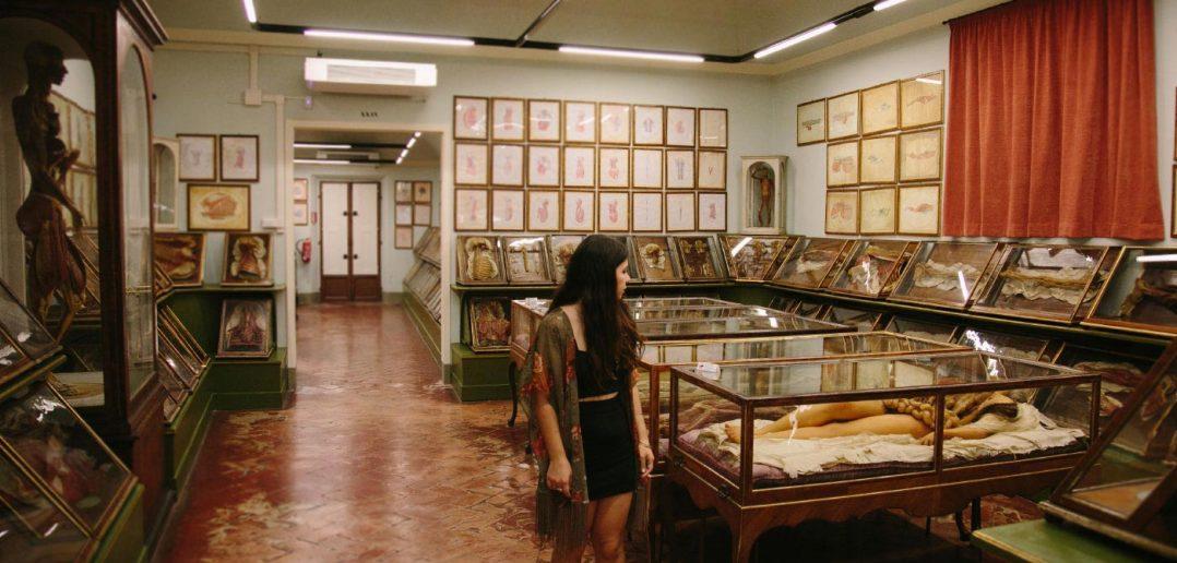 la-specola-anatomy-wax-museum