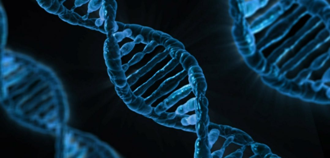 CRISPR-Cas-9 Gene Editing-DNA