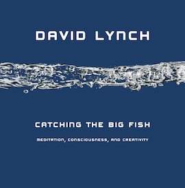 Catching the Big Fish- Meditation, Consciousness, and Creativity- 10th Anniversary Edition