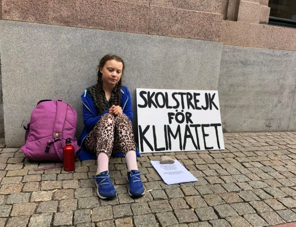 In Sweden, a school girl is on strike from school to raise climate awareness